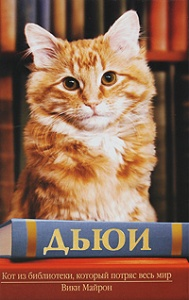 99279_dyui_kot_iz_biblioteki_kotoryy_potryas_ves_mir